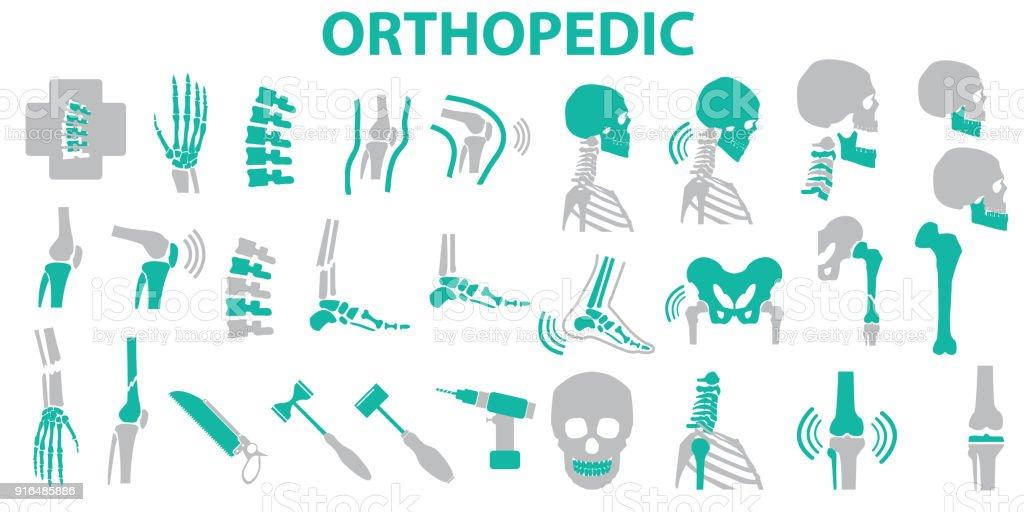 Orthopedic And Spine Symbol Set Vector Illustration Eps 10 Mono