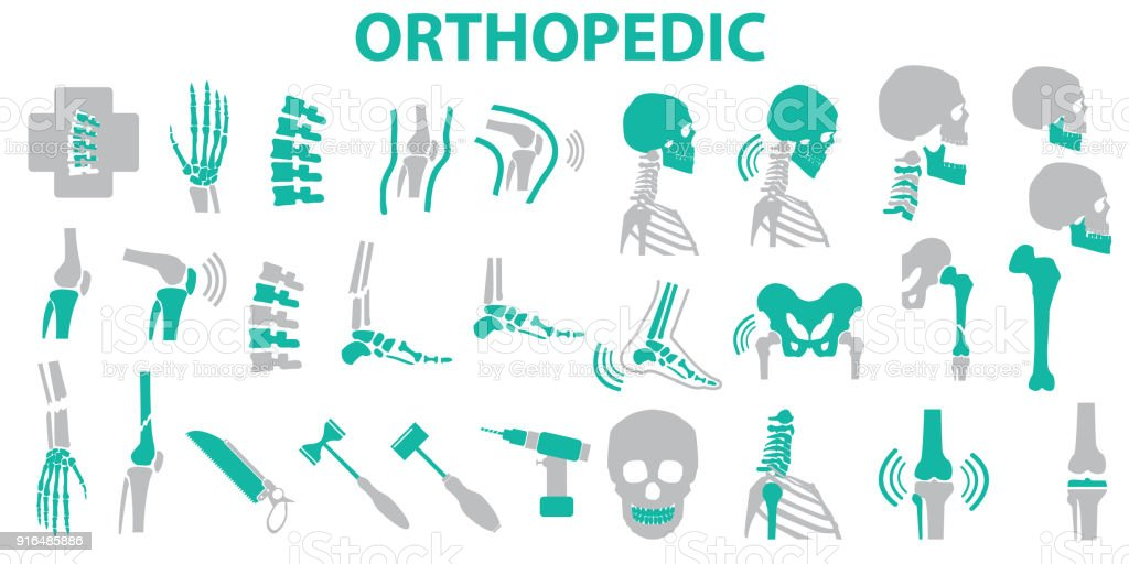 Orthopedic and spine symbol Set - vector illustration eps 10 , mono vector symbols vector art illustration