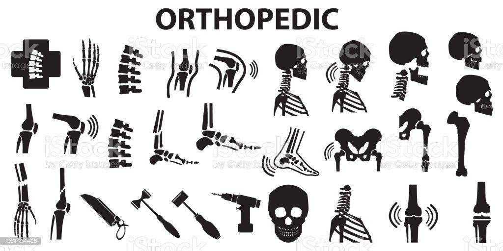 Orthopädische Wirbelsäule Gemeinsame Knochen Menschlichen ...