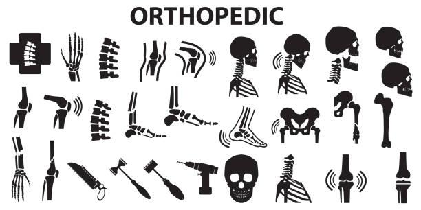 ilustrações, clipart, desenhos animados e ícones de ortopédicas da coluna vertebral comum osso humano médica saúde plana ícones. símbolo de vetor mono - ortopedia