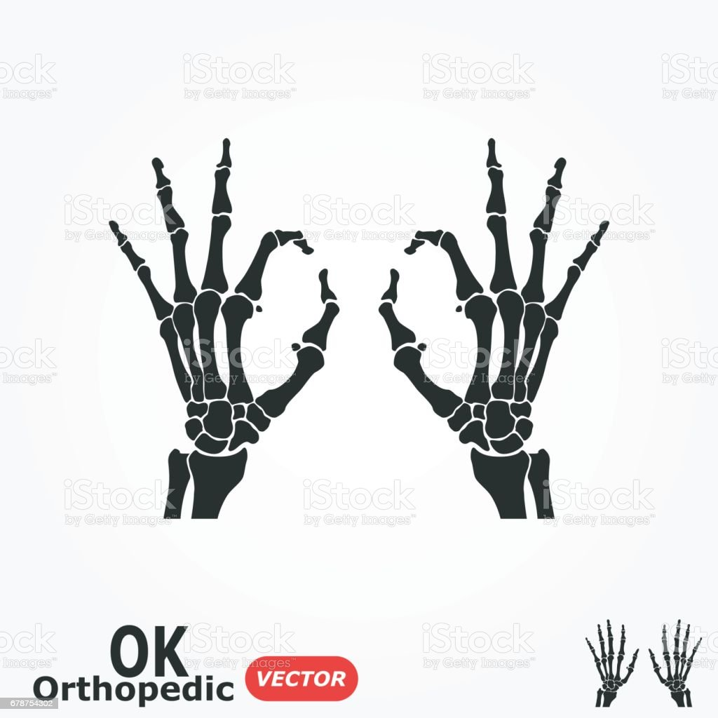 OK orthopedic  ( X-ray human hand with OK sign ) vector art illustration