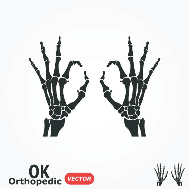 Royalty Free Skeleton Hand Clip Art, Vector Images