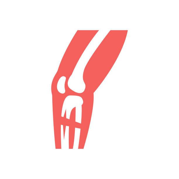 Orthopedics Icon vector art illustration