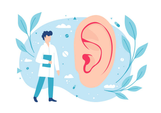 illustrazioni stock, clip art, cartoni animati e icone di tendenza di otolaryngologist examines the ear. ent consults. hearing and deafness. - sordità