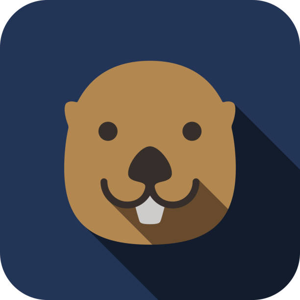 otter animal face flat design - otter stock illustrations, clip art, cartoons, & icons