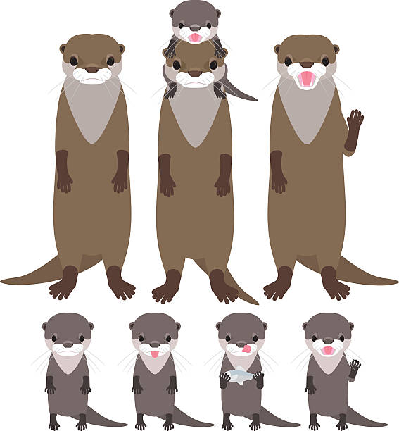 otter family - otter stock illustrations, clip art, cartoons, & icons