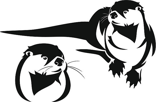 otter - otter stock illustrations, clip art, cartoons, & icons