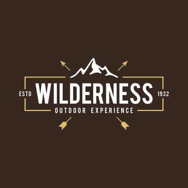 Outdoor Adventure Retro Emblem an amazing Outdoor Adventure Retro Emblem like mountain, wilderness, camping, family and more wilderness stock illustrations