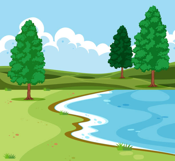 stockillustraties, clipart, cartoons en iconen met buiten lake landschap scène - meeroever