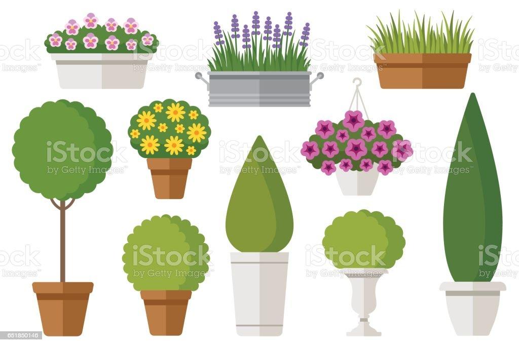 Plantes en pots en plein air - Illustration vectorielle