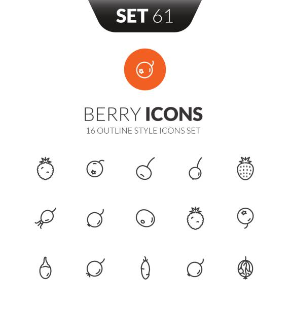Outline black icons set in thin modern design style Outline black icons set in thin modern design style, flat line stroke vector symbols - berry collection honeysuckle stock illustrations