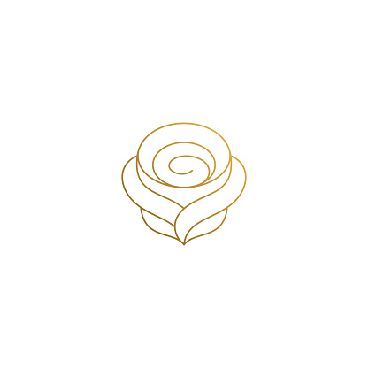 Outline design of elegant rose hand drawn with thin lines