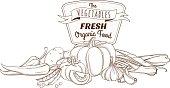 Outline hand drawn sketch vegetable still life composition (flat