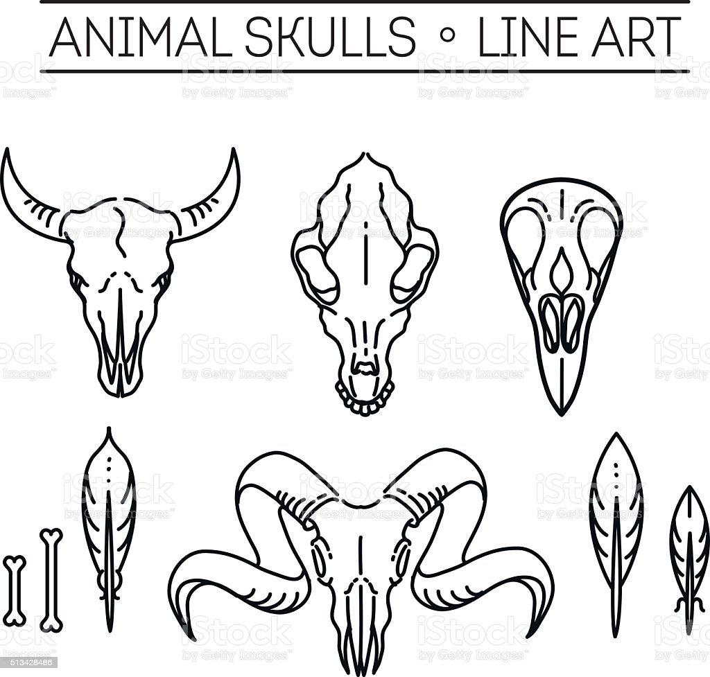 outline icon skull animals vector art illustration