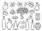 Hand drawn olives, tree branches, glass bottle, jug , metal dispenser and olive oil. Vector illustration outline in retro sketch style.