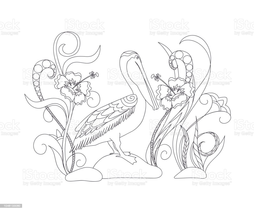 outline ornamental pelican and tropical flowers stock vector art