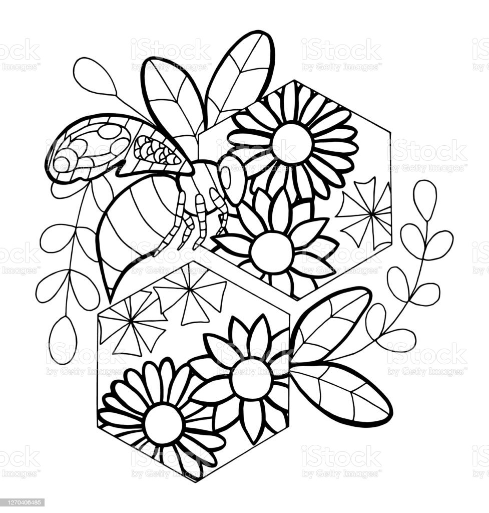 Outline Vector Illustration Of Bee Honeycomb Stock Illustration Download Image Now Istock