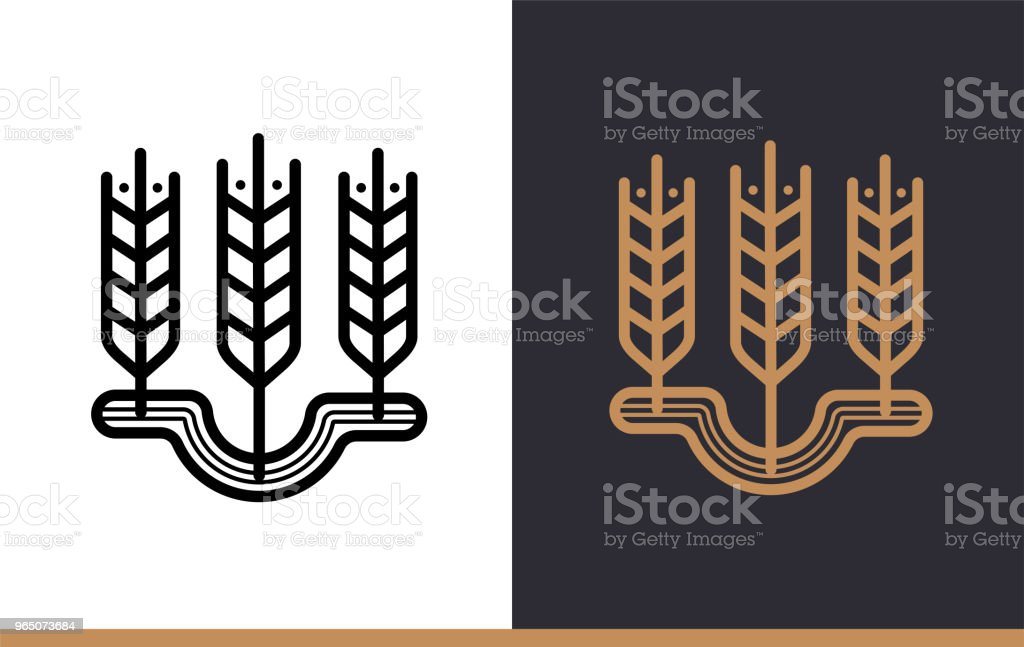 Outline WHEAT icon, bakery. Vector line icons suitable for info graphics, print media and interfaces royalty-free outline wheat icon bakery vector line icons suitable for info graphics print media and interfaces stock vector art & more images of bakery