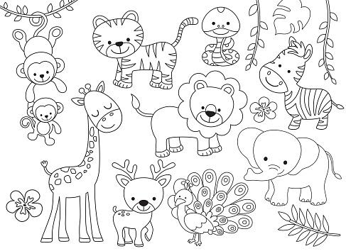Outline Wild Safari Animals Vector Illustration for Coloring