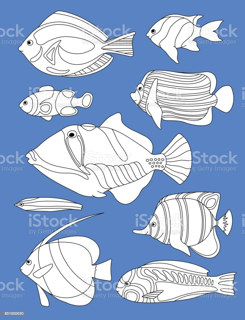 Skizzierte Horizontale Malvorlagen Korallenfische Tropische Fische ...