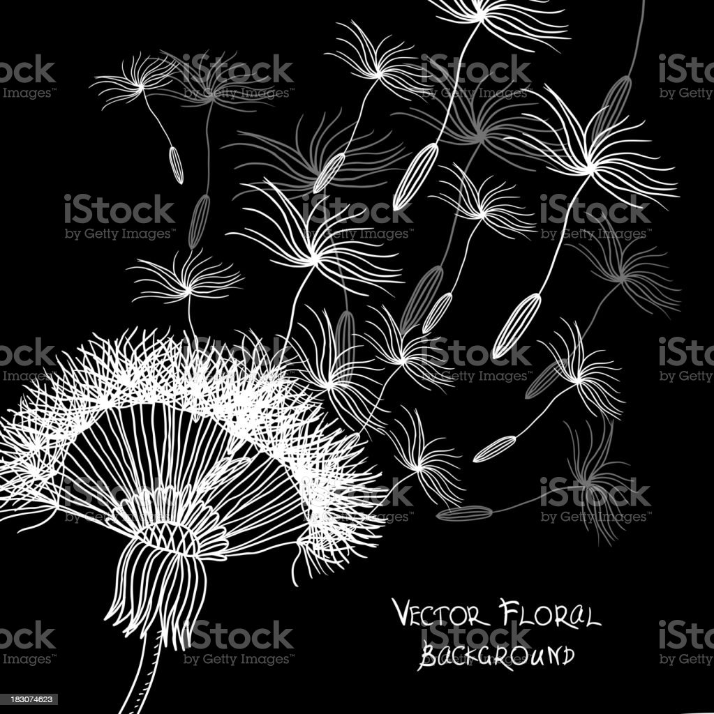 Overblown dandelion  background royalty-free stock vector art
