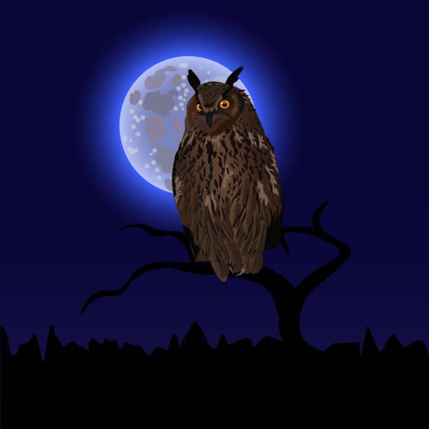 Top 60 Owl Moon Clip Art, Vector Graphics and ...