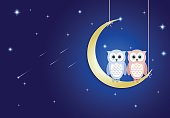Owl and moon at night sky with comet and star background