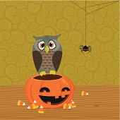 Bug-eyed owl sitting on Halloween pumpkin. Curly background. Easy to edit, elements are on different layers. Global colors.