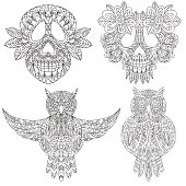 Owl and skull sketchs - decorative elements set isolated vector illustration