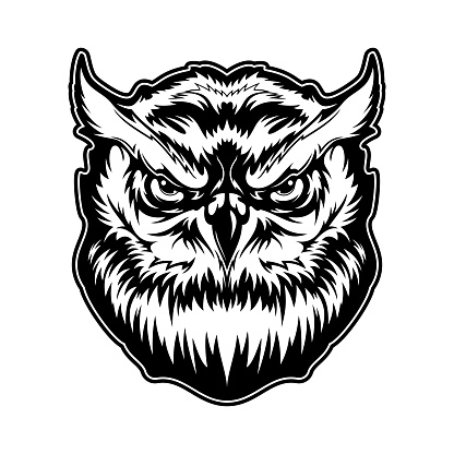 Owl animal head with angry face, vector mascot