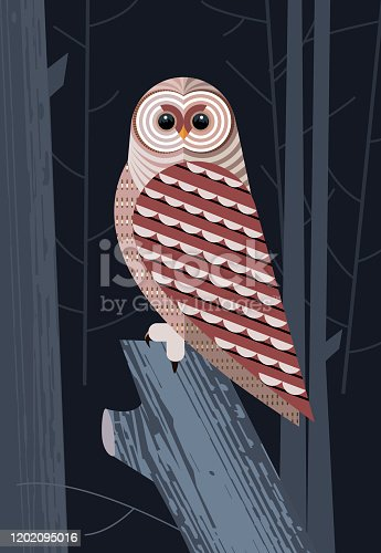 istock Owl before the hunt 1202095016