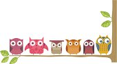Six owls, on a branch.
