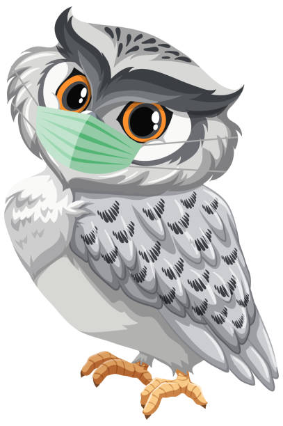 Clip Art Of A Animated Owl Wallpaper Illustrations ...
