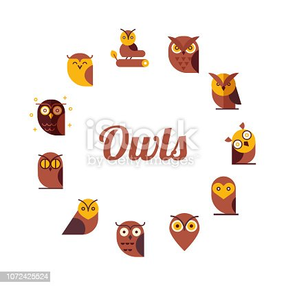 Set of owls design elements for schools, educational signs.