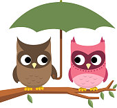 Owl couple perching under Umbrella vector illustration.