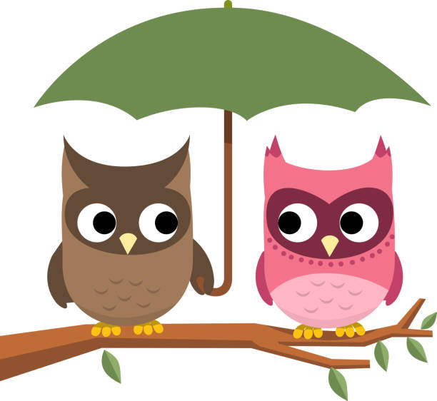 owl couple perching under umbrella - great horned owl stock illustrations, clip art, cartoons, & icons