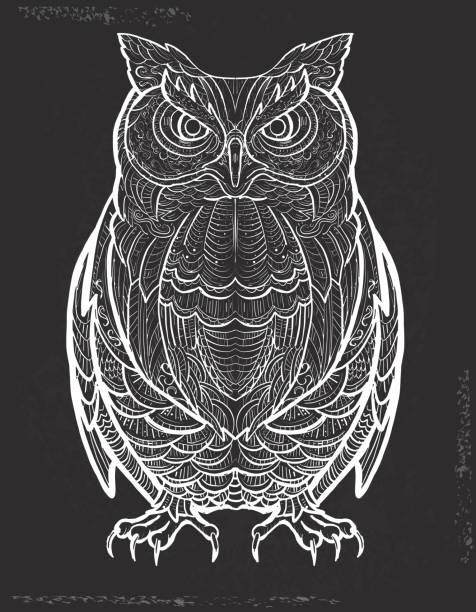 owl doodle drawing hand drawn on chalk texture - black and white owl stock illustrations, clip art, cartoons, & icons