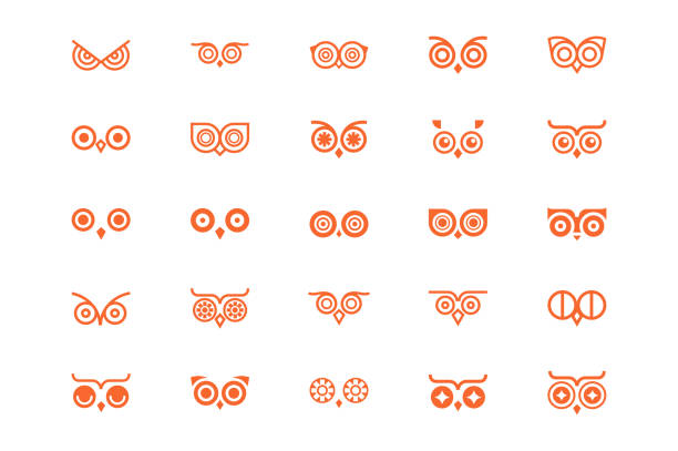 owl eye line icon collection. - sowa stock illustrations