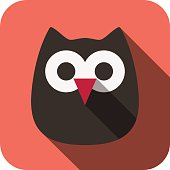 owl face flat icon design. Animal icons series.