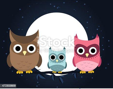 istock Owl family perching at night 472303859