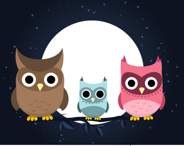 owl family perching at night - great horned owl stock illustrations, clip art, cartoons, & icons