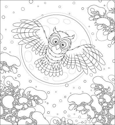 Owl flying in the winter moonlit sky