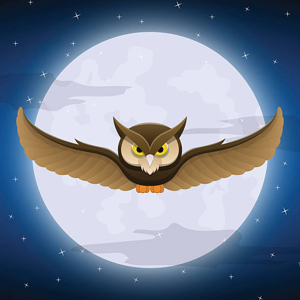 Royalty Free Night Owl Clip Art, Vector Images ...