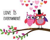 Owl Happy Valentines Day. Owl couple in love, on the branch together. Vector illustration