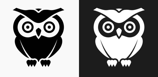 owl icon on black and white vector backgrounds - black and white owl stock illustrations, clip art, cartoons, & icons