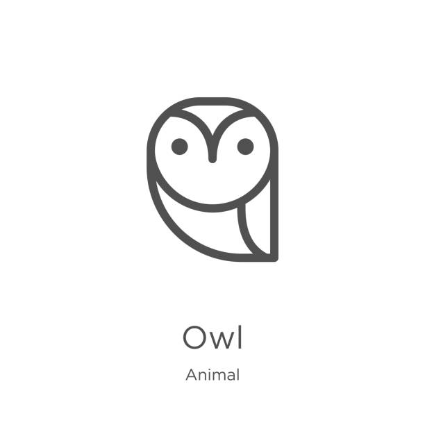 owl icon vector from animal collection. thin line owl outline icon vector illustration. outline, thin line owl icon for website design and mobile, app development. - sowa stock illustrations