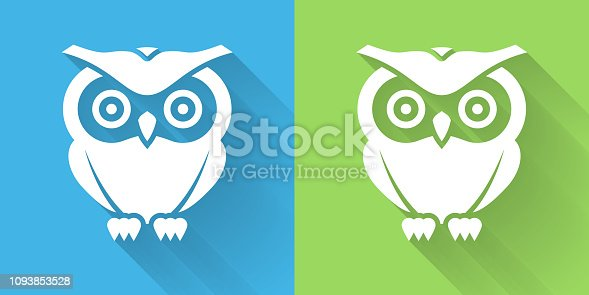 Owl Icon with Long Shadow. The icon is on Blue Green Background with Long Shadow. There are two background color variations included in this file. The icon is rendered in white color and the background is blue or green. There is also a 45 degree long shadow.