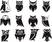 Set of 12 owl icons in black