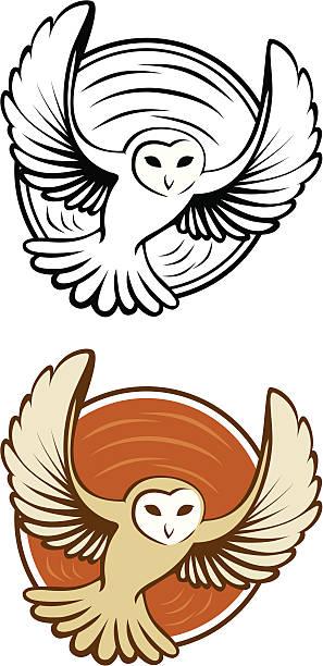 Owl in Circle vector art illustration