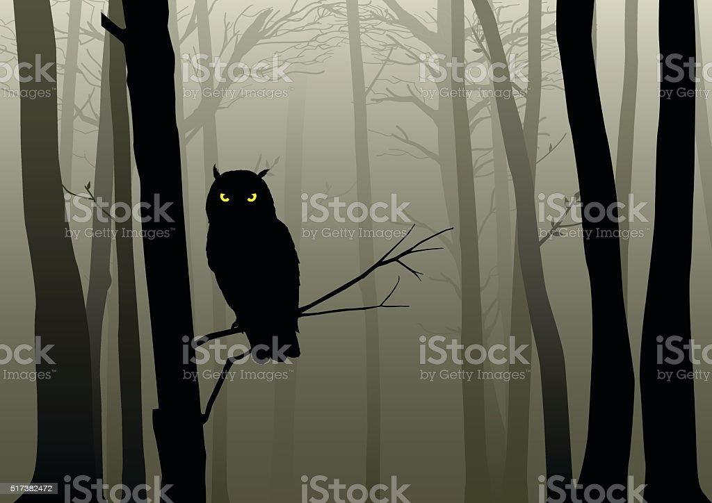 Búho en El Misty madera - ilustración de arte vectorial